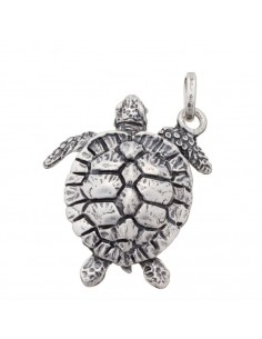 Charm Giovanni Raspini tartaruga grande